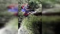 Nehre Düşen Köpeği AFAD Kurtardı