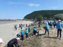 Öğrenciler, Park Ve Sahilde Çöp Topladı