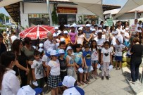 BELEDİYE MECLİS ÜYESİ - Söke'de Dünya Çevre Günü Kutlandı