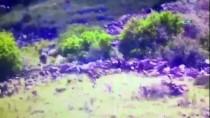 Doğubayazıt'ta Etkisiz Hale Getirilen 5 Terörist İHA Tarafından Görüntülendi