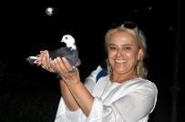 İyi Parti - Güvercin Sevdası Mesafe Tanımıyor