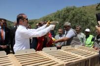 ADEM YıLMAZ - Yozgat'ta 3 Bin 500 Kınalı Keklik Doğaya Salındı
