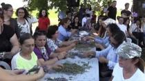 GÜNAY ÖZDEMIR - 'Edirne Lavanta Tarla Günleri'