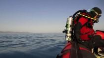 KÖPEK BALIĞI - Muğla'daki Kum Köpek Balıkları Görüntülendi