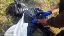 KAZANLı - Uyuşturucu Taşıdığı Araçla Kaçarken Kaza Yapıp Yakalandı