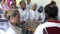 GÜMÜŞKAYA - Arı Sütü Ev Kadınlarının Umudu Oldu