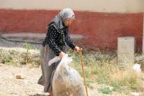 TAHAMMÜL - Nazmiye Nineden 'Çevre Temizliğinde' Örnek Davranış