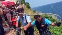 Uçurumda Mahsur Kalan Köpekleri İtfaiye Kurtardı