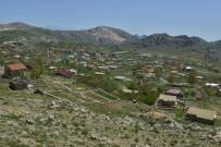 RAYLI SİSTEM - Feslikan'a Toplu Ulaşım Seferleri Arttırıldı
