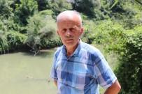 OSB'nin Atık Suları Sakarya Nehri'ni Kirletmeye Devam Ediyor
