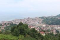 SÜLEYMAN SOYLU - Trabzon'da Kabinedeki 4 Bakanın Sevinci Yaşanıyor