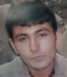 PKK TERÖR ÖRGÜTÜ - Gri listedeki terörist Yunus Dalgın öldürüldü!