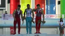 OLIMPIYAT - Türk Cimnastikçiler Bir İlki Başardı
