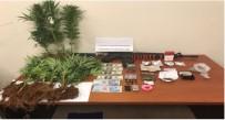 AMERIKAN DOLARı - Uyuşturucu Operasyonda 1 Kişi Gözaltına Alındı