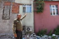 Ardahan'da Duvarda Yeşeren Söğüt Şaşırttı