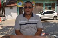Edirne'de Arı Ölümleri Tedirgin Etti