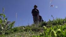 Huzur Bulan Dağlar Sporcuları Ağırlıyor