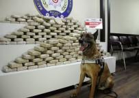 KOCAELİ VALİSİ - Kocaeli'de Son Bir Yılda 3 Tona Yakın Uyuşturucu Ele Geçirildi