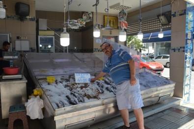 Sıcaklar Arttı, Balığa İlgi Azaldı