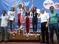 SAVUNMA SANATI - Tuncelili Kick Boksçulardan Türkiye Dereceleri