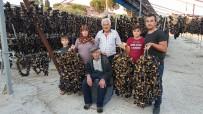 SILIKON VADISI - Yaşını Satamayınca Kuruttular, Şimdi Tüm Dünyaya Satıyorlar