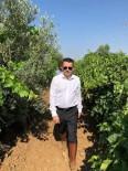 İZMIR VALISI - Bakan Pakdemirli Hafta Sonu Mesaisini İzmir'e Ayırdı