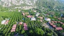 YUMURTA - 'Caretta Muhtarı'nın Yaşam Nöbeti