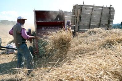 Çiftçilerin Hububat Hasadı Mesaisi