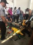 ŞEKER FABRİKASI - Şeker Torbalarının Altında Kalan 3 İşçi Yaralandı