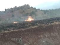 BADEMLI - Anız Yangınında Alevler Ormana Sıçramadan Söndürüldü