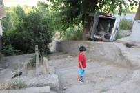 SELAHATTIN EYYUBI - Diyarbakır'da Faciayı Ağaç Önledi