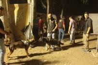 MOR VE ÖTESI - Ünlü Sanatçıların Sahne Aldığı Festivale Polis Baskını