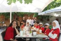 Büyükşehir Gençleri Sosyalleştiriyor