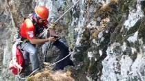 GÖKÇELER - Muğla'da Kayalıklarda Mahsur Kalan Oğlak Kurtarıldı