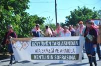 ARMOLA PEYNİRİ - Sakin Şehir'de Ata Ekmeği Ve Armola Şenliği