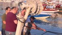 BEŞİKTAŞ - Beşiktaş'ta Denize Giren Kişi Boğulma Tehlikesi Geçirdi