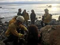 CALIFORNIA - Genç Kadın Radyatörün Suyunu İçerek Hayatta Kaldı