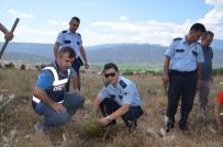 Kargı'da 15 Temmuz Şehitleri İçin 250 Fidan Dikildi