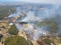 İŞ MAKİNESİ - Manavgat'ta Orman Yangını