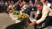 AHMET ÇAKıR - Milletvekili Çakır'dan Alkışlanacak Hareket