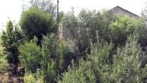 SALDIRI HAZIRLIĞI - Van'da saldırı hazırlığındaki 2 terörist etkisiz hale getirildi