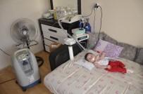 KALP AMELİYATI - 11 Ayılık Minik Elif Kalbindeki 11 Milimetrelik Delikle Yaşamaya Çalışıyor