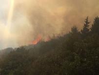 HELIKOPTER - Amanos Dağları'nda orman yangını