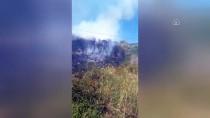 HELIKOPTER - Balıkesir'de Makilik Alanda Yangın