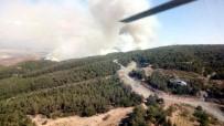 HELIKOPTER - Hatay'da Orman Yangını