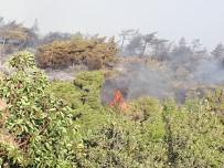 AMANOS DAĞLARI - Hatay'da Orman Yangınında Soğutma Çalışmaları Başladı
