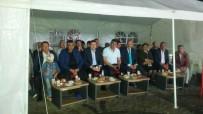 DEMOKRASİ NÖBETİ - Narman'da 15 Temmuz Etkinliği