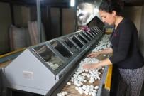 FABRIKA - Terör Bitti İpek Böcekçiliği Üretimi Tavan Yaptı