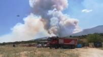 HELIKOPTER - Torbalı Kaymakamı Orman Yangınındaki Acı Bilançoyu Açıkladı