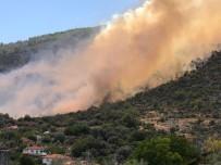 ANIZ YANGINI - Anızdan Ormana Sıçrayan Yangın Rüzgarın Etkisiyle Büyüdü
